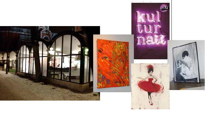 CollageKulturnatt